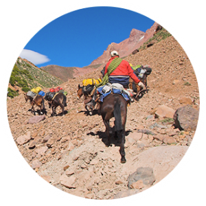 Aconcagua South Wall Trek